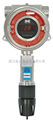 有毒气体检测仪DM-100