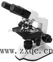 双目生物显微镜() 型号:81M/XSP-2CA