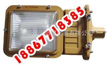 SBD1101吸壁式,SBD1101三防灯,SBD1101无极灯