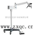 手术显微镜 型号:81M/YZ20P6