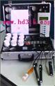 中西便携式水质分析仪(温度 盐度 溶氧度 pH 氨氮 硫化氢 ,亚硝酸)/污水和水产养殖 型号: XU30DY-3S()