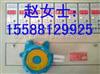 甲烷泄漏报警器-CT防爆等级